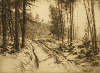 Percival Gaskell;  Silver Wooded Road